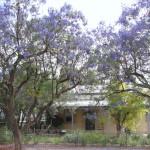 Whites cottage